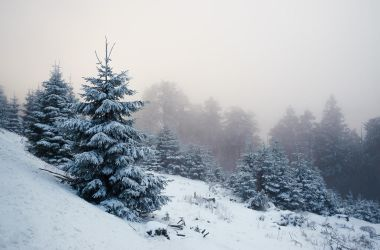 A Winter Poem by aw-landscapes