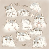 Valor Expression Practice by Pawlove-Arts