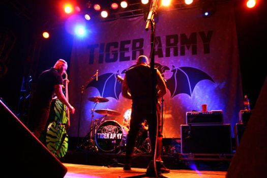 Tiger Army by Subcultureart