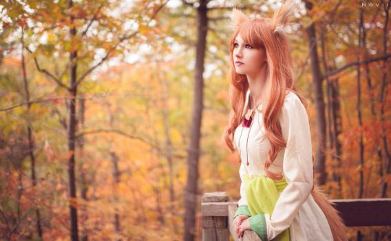 A walk in the woods- Spice and Wolf (1) by kazeplay