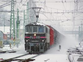 0450 002-5 with a freight in Gyor station by MorpheusPhotoworks