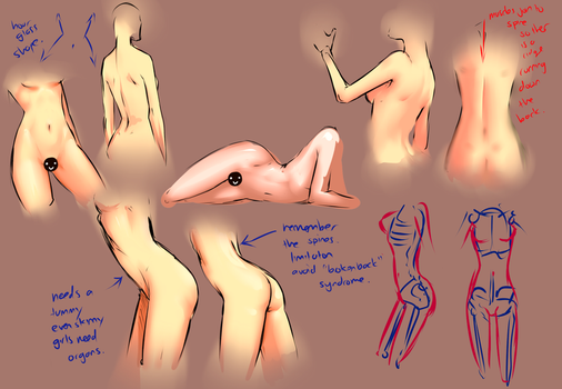 Female body study by moni158