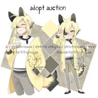 .auction closed by Chikyruu