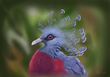 Crowned Pigeon (Digital Painting) by Rick-Lilley
