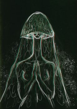 The Veiled Lady by Maquenda