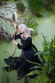 Swamp Witch by Nivelis
