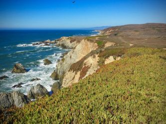 Sonoma Coast State Beach by CursiveQ-Designs