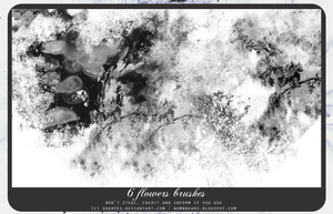 Flowers Brushes by shadyes