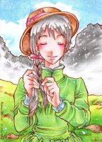 Howls moving Castle - ACEO 012 by Arthay