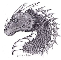 Draco by Hironi