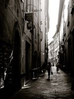 Lucca 7 by Catliv