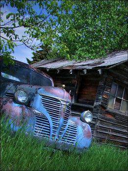 Old Blue's Resting by wb-skinner