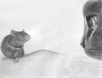 Cat and Mouse by Becky125