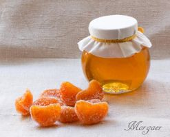 Tangerine candied fruit - end. by Morgaer