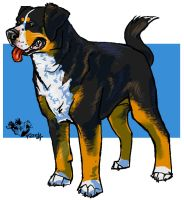 Greater Swiss Mountain Dog 1 by fazzle
