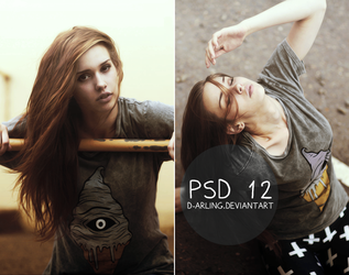 PSD 12 by d-arling