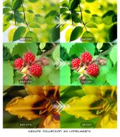 Nature Collection Actions by LonelyDiary