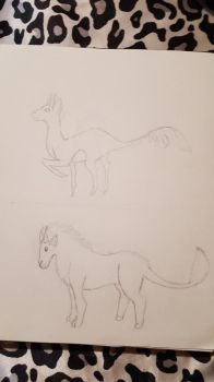 Sketchs. by wolflover1020