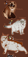 $10 Warrior Cat Adopts 2 (1/4 Left) by Evertooth