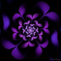 Whale Flower by Colliemom