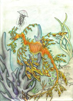 Sea Dragon by sariphine13
