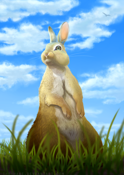 It's A Beautiful Day by The-Hare