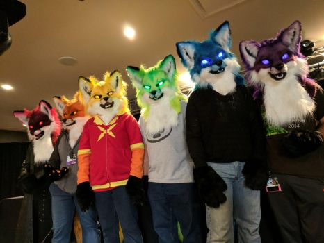 Rainbow Foxes at Furry Migration by Okami27