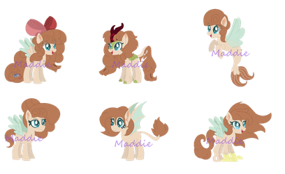 Maddies Forms (Part one) by PonyPainterMaddie