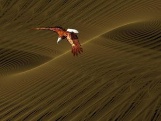 Desert Eagle. by Thelma1
