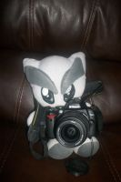 cam fella 16-365 by boomer-anonymous