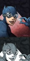 The Catwoman - Daily Drawing by mregina