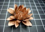 Copper Lily by ksphoto