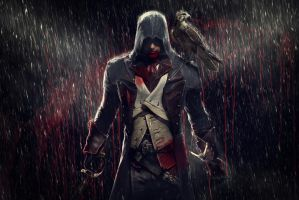 Assassins Creed by FotoInc