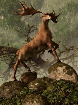 The Irish Elk by deskridge