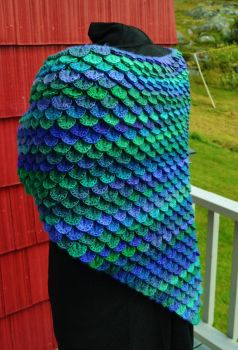 Dragon Fly Handmade Crochet Shawl by HaleyGeorge