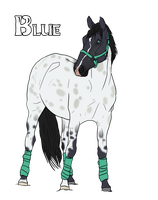 SBS Little Boy Blue - Sold by StoryBookStables