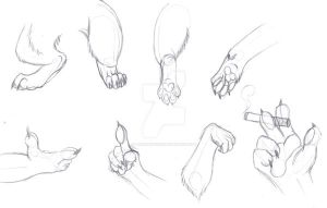 Anthro Paws - training 2 by LawhanWoves