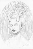 Daughter of the Forest study by nelchee