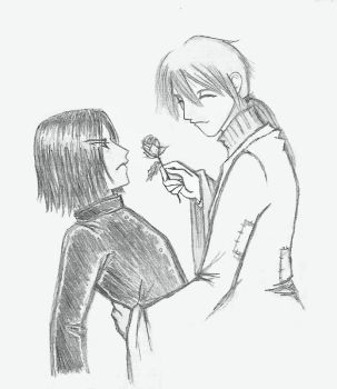 A flower for you by Severus-x-Remus-Club