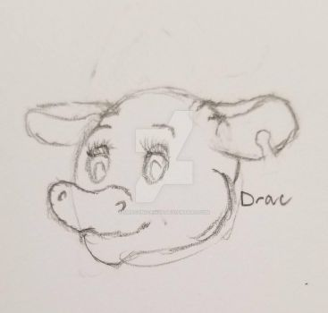 Moo by Draconicairus