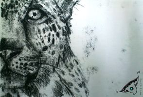 Monoprint - LEOPARD by dino-wolf