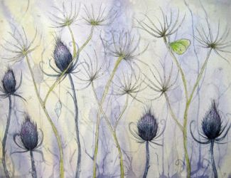 Blue thistle by dragonflywatercolors