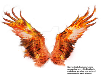 506 pheonix wings 02 by Tigers-stock