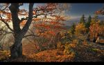 Autumn world 10 by PawelJG