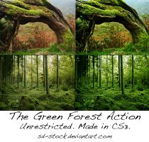 The Green Forest Action by sd-stock