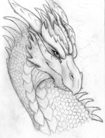 Dragon 2 by KTechnicolour