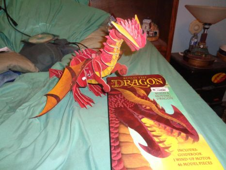 Build a Dragon book and model by trainman666