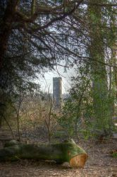 The Log and the Water Tower by cthonus