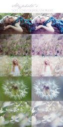 Free: Soft Tones Lightroom Preset by Alyphoto