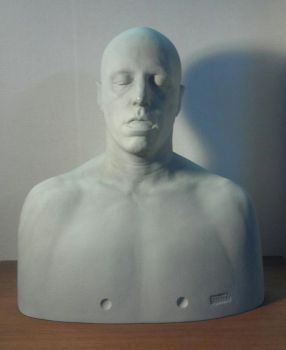 David Mosher FX Ultimate Maskmaker Sculpting Form by propsculptor